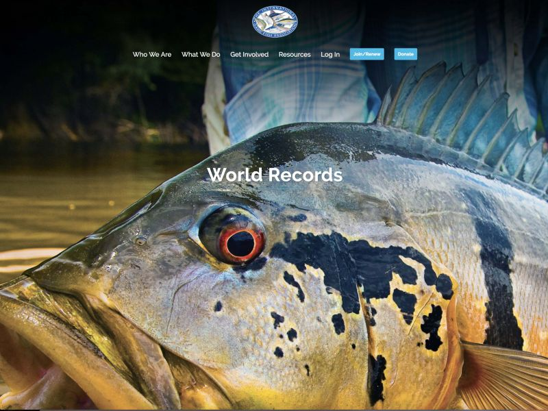 IGFA launches new Website