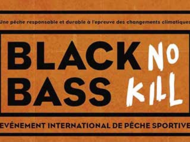 Maroc: Black Bass No Kill